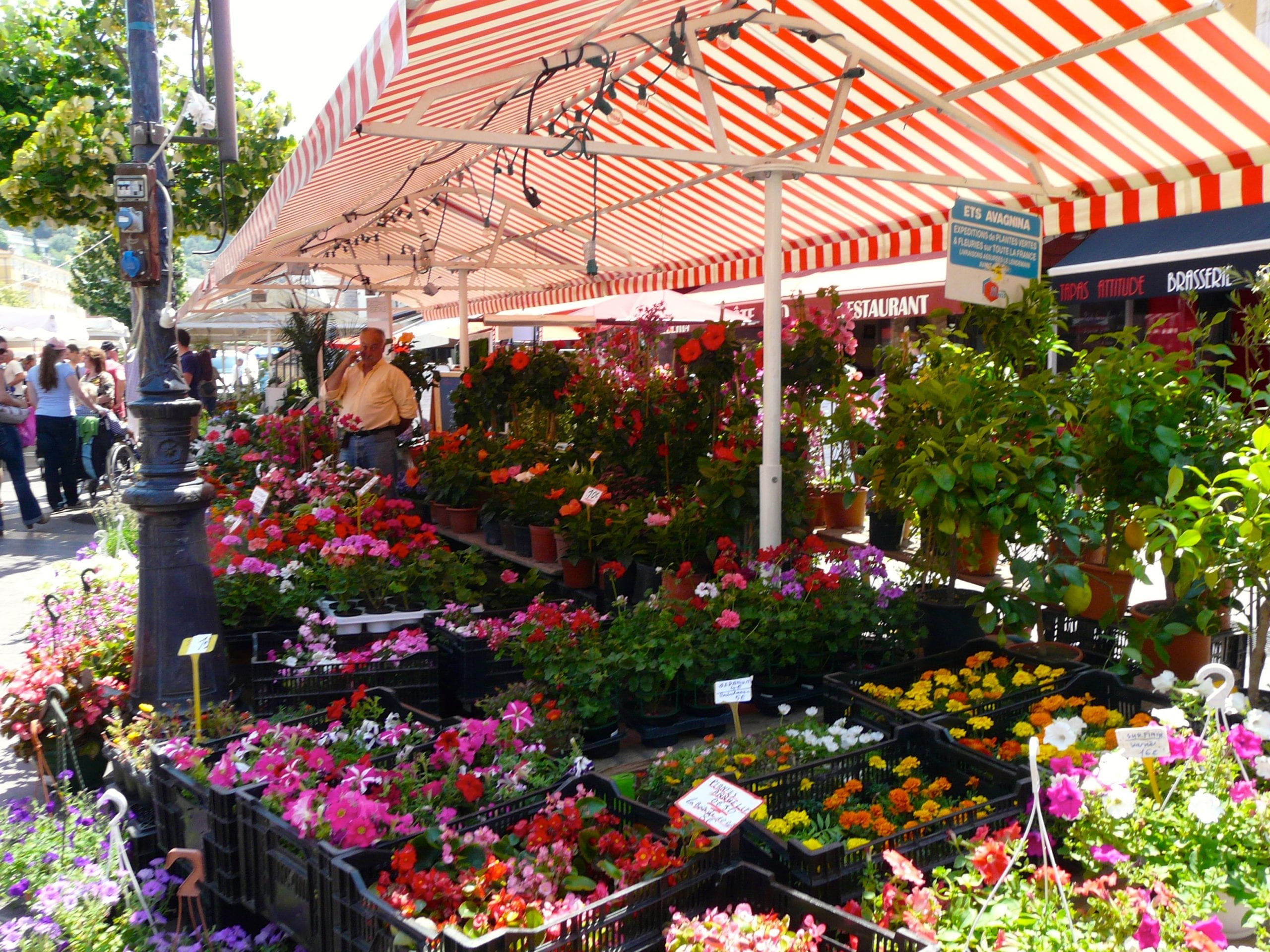 Nice Marche Flowers
